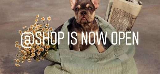 Instagram: account ufficiale @shop per l'ecommerce