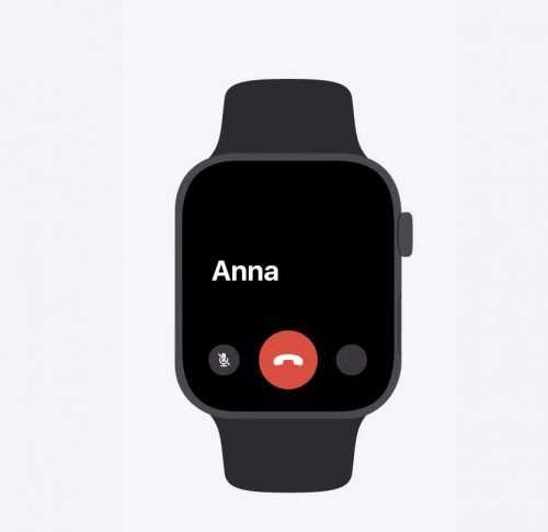 iPhone e Apple Watch